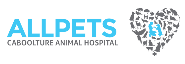 Logo for Veterinarians Caboolture, Queensland | Allpets Caboolture District Animal Hospital