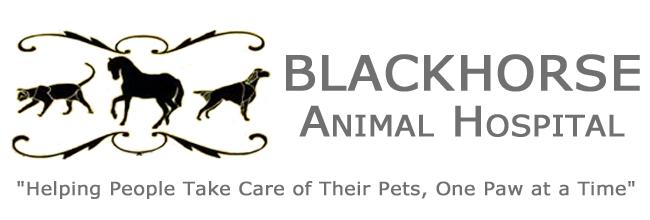 Blackhorse Animal Hospital