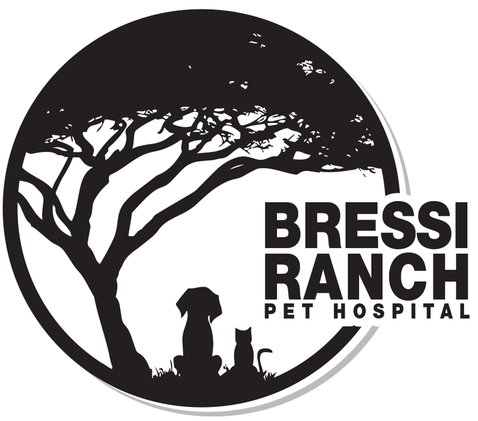 Bressi Ranch Pet Hospital