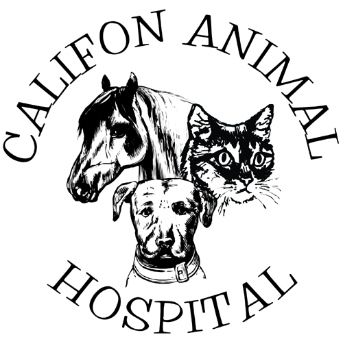 Califon Animal Hospital