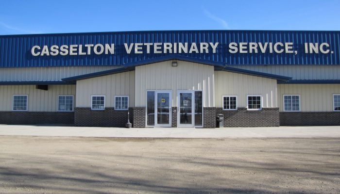 Welcome to Casselton Veterinary Service