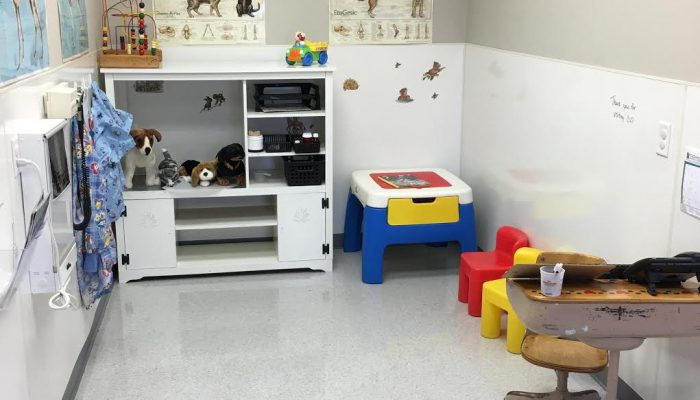 Kids veterinary play area.