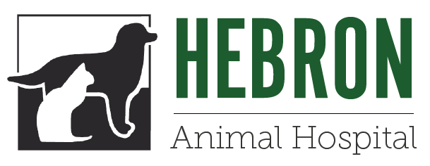 Logo for Veterinarians in Hebron | Hebron Animal Hospital