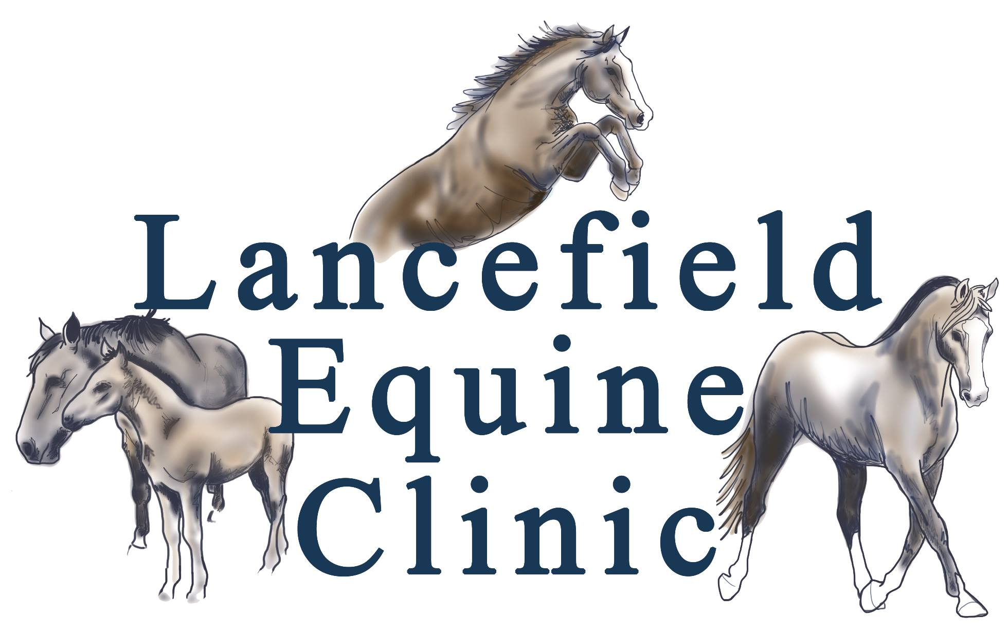 Lancefield Equine Clinic