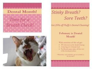 Dental Month 2016