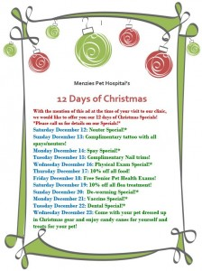 revised 12 days of christmas specials