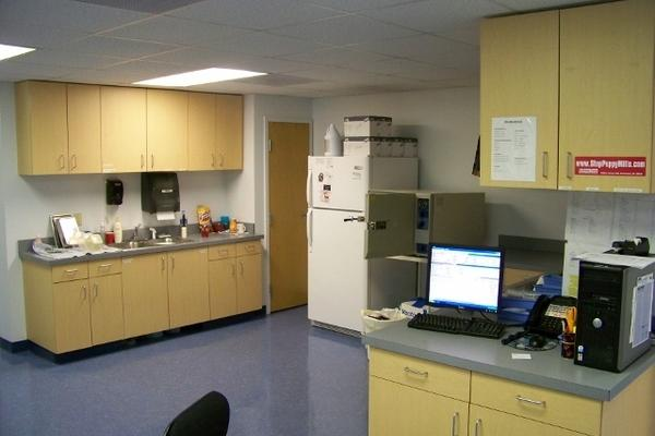 Here is one view of our Treatment area where we do some of the procedures on your pet(s).