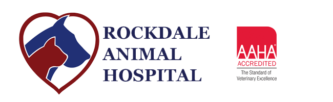 Logo for Veterinarians in Conyers & Covington | Rockdale Animal Hospital
