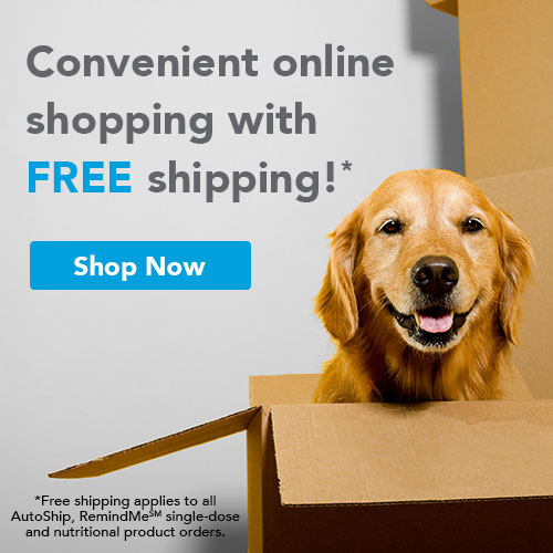 Conveient online shopping with free shipping