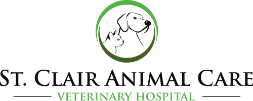 St. Clair Animal Care