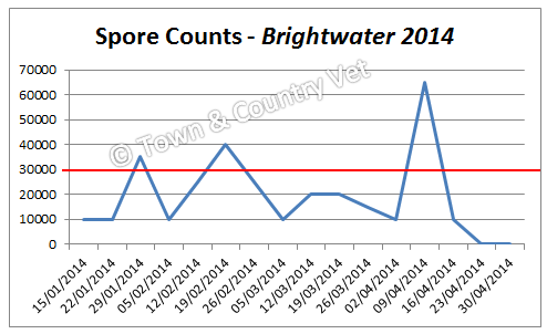 spore-counts-brightwater-2014