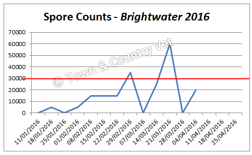 spore-counts-brightwater-2016