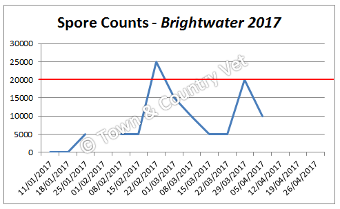 spore-counts-brightwater-2017