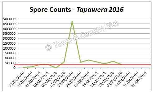 spore-counts-tapawera-2016