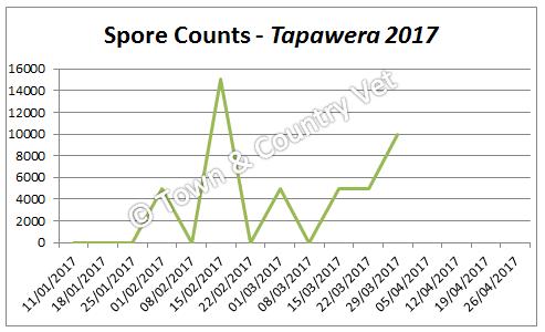spore-counts-tapawera-2017