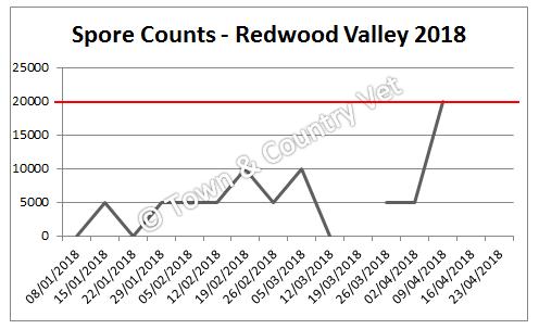 redwood valley 2018