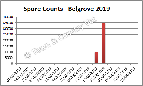 spore counts Belgrove 2019