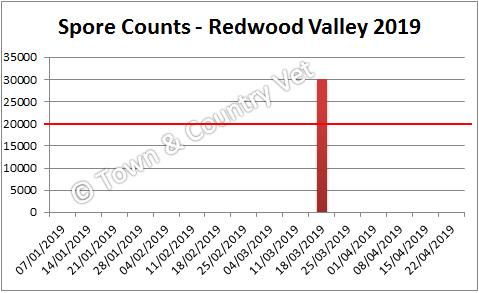spore counts Redwood Valley 2019