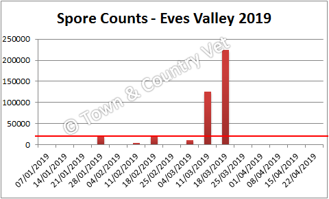 spore counts Eves Valley 2019