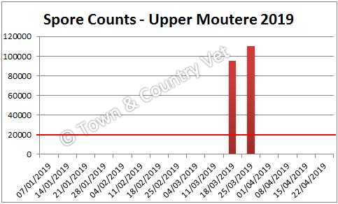 spore counts Upper Moutere 2019