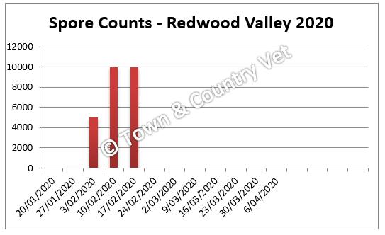 spore counts Redwood Valley 2020