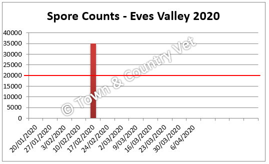 spore counts eves valley 2020