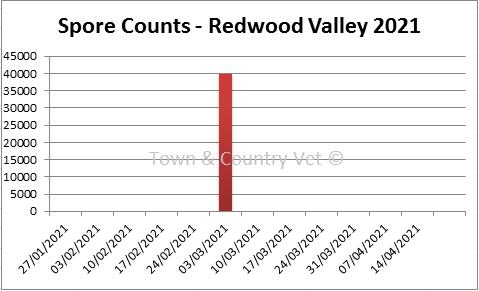 SporeCount RedwoodValley05MAR21