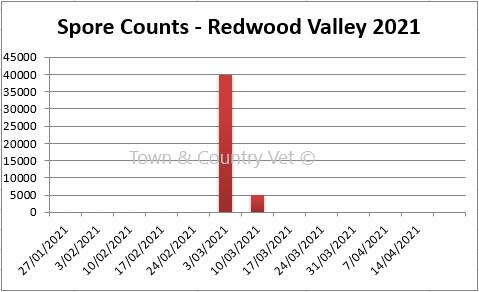 SporeCount RedwoodValley10MAR21