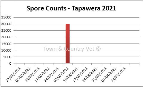 SporeCount Tapawera05MAR21